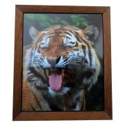 "Fotografie ""Tiger"" in Holzrahmen"